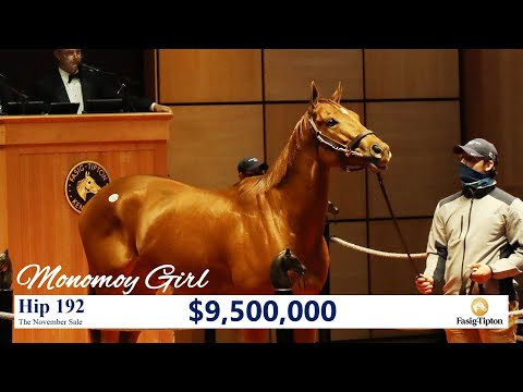 Monomoy Girl sells for $9,500,000 at The November Sale (2020)