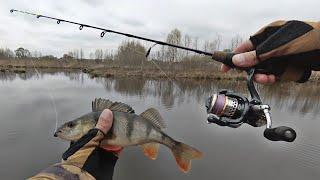 Самый короткий спиннинг 58 см Ловля окуня и щуки с берега на микроджиг в небольшом озере