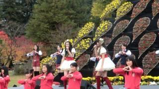 2014 11 2 弘前城菊と紅葉まつり 13:30~ りんご娘&アルプスおとめLIV...