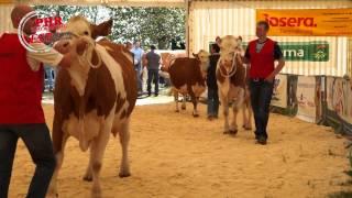 Festival de l'élevage 2014
