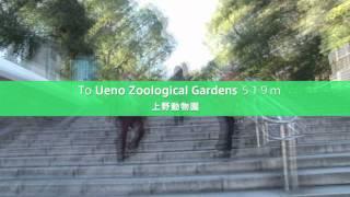 Ueno Zoological Gardens (上野動物園)