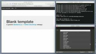 This video demos the basic backlift workflow for front-end developm...