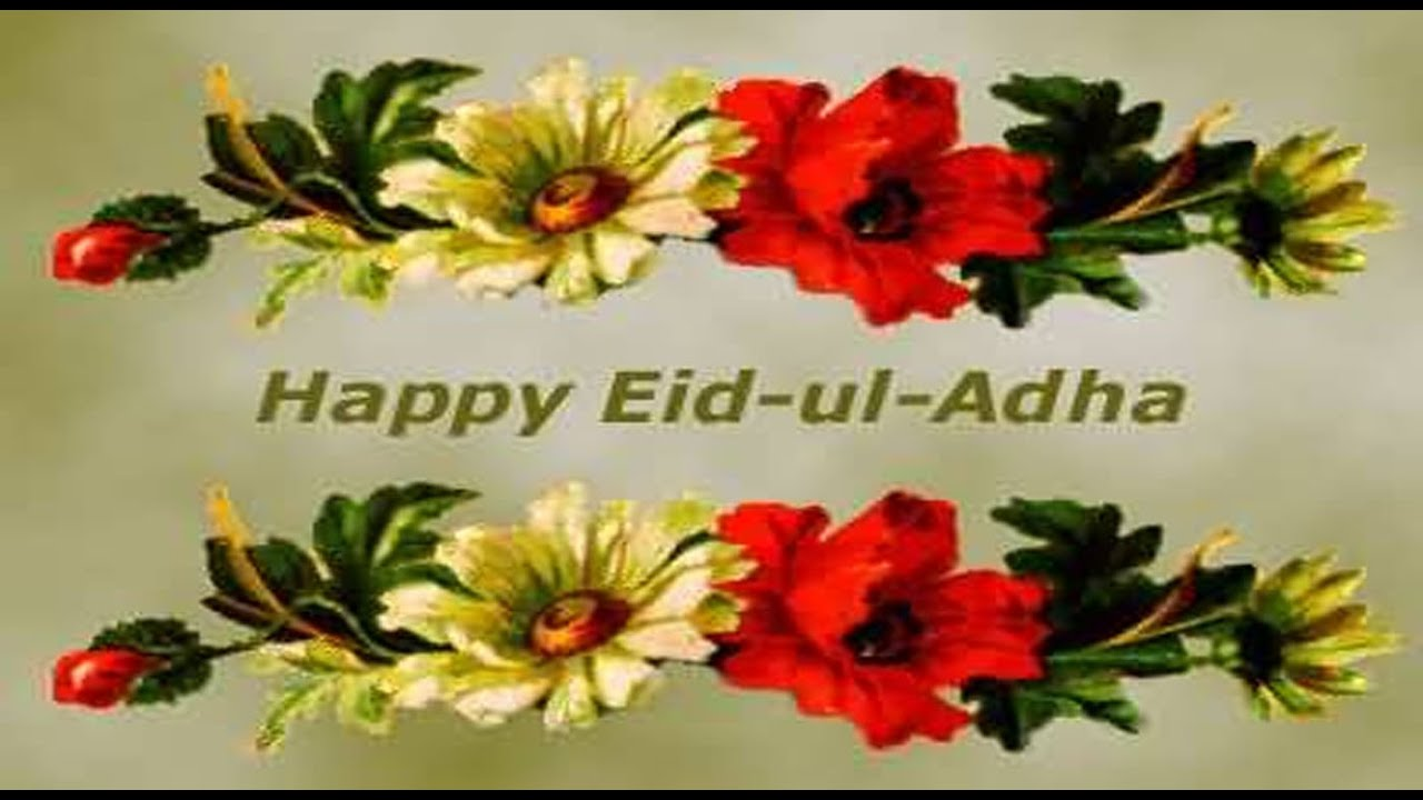 Happy eid ul adha bakrid 2016 wishes greetings images quotes happy eid ul adha bakrid 2016 wishes greetings images quotes sms whatsapp video 2 youtube kristyandbryce Choice Image