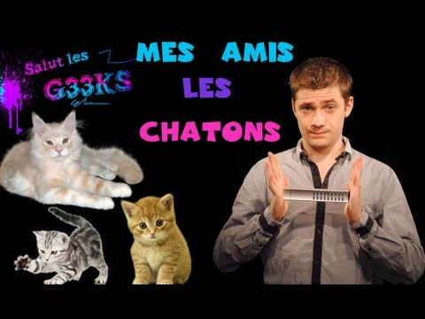 Mes amis les chatons – SLG N°9 – MATHIEU SOMMET