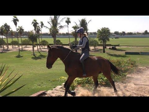 Bareback & Tackless XC Horse Riding (Dubai)