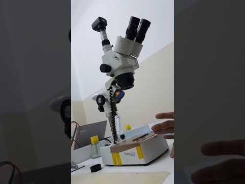 wl s ve ems 420 serisi mikroskop incelemesi