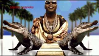 Flo Rida ft. Pitbull - Can