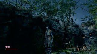 Sekiro: Hirata Estate hidden Purple Ninja & Mist Raven's Feathers location