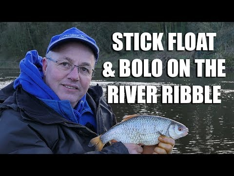 Stick Float And Bolo' On The River Ribble