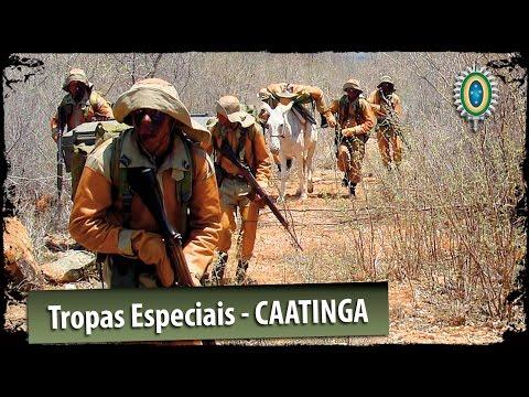 Tropas Eiais do Exército Brasileiro - Caatinga