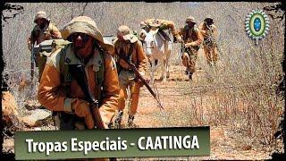 Baixar Tropas Especiais do Exército Brasileiro - Caatinga