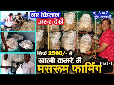 Mashroom farming | Best Farming Business ideas in india | सिर्फ 2500 RS से  मशरूम फार्मिंग | पार्ट 1