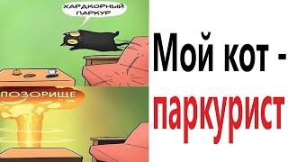 Приколы 2021 МОЙ КОТ ПАРКУРИСТ Смешные видео Мемы Попробуй не засмеяться Доми шоу