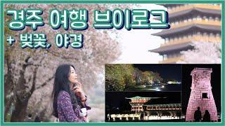 경주여행 브이로그 벚꽃 & 야경 보고 왔지롱 ♥…