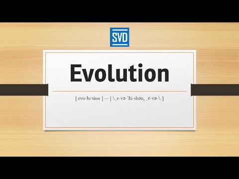Evolution » Definition, Meaning, Pronunciation, Origin, Synonyms, Thesaurus, and Example Sentences