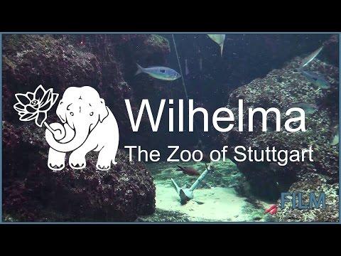 Wilhelma - The Zoo of Stuttgart