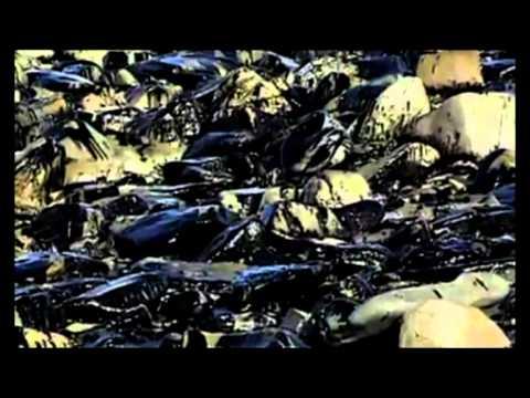 Qüasar - Exxon Valdez - Eclipse Parcial de Lunas