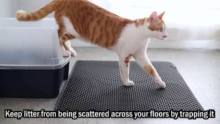 BlackHole Litter Mat - Keep your Floor Clean, Best cat litter mat