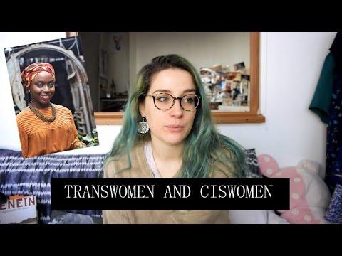 On transgender women and Ngozi Adichie