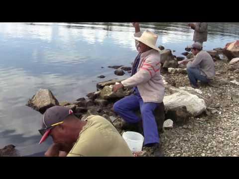 Impactante testimonio de pescadores cubanos, como hacen para pescar en Caibarien