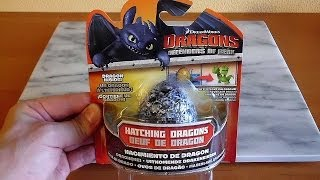 Dragons Defenders Of Berk Surprise Fizzing Egg #1 Hatching Dragon Toys 恐竜の卵