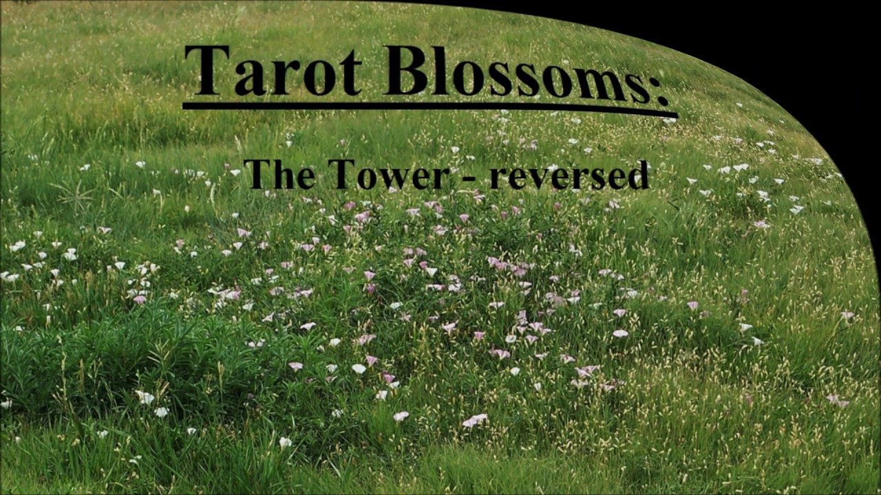Tarot Blossoms: The Tower - reversed