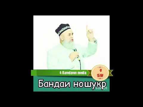 Бандаи Ношукр ,,Хочи Мирзо
