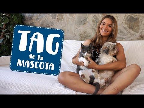 Tag de la Mascota  Furry Friend Tag