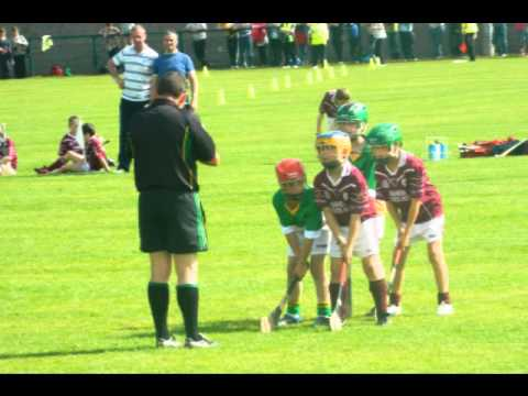 Community Games National Finals 2012 Shinrone Coolderry