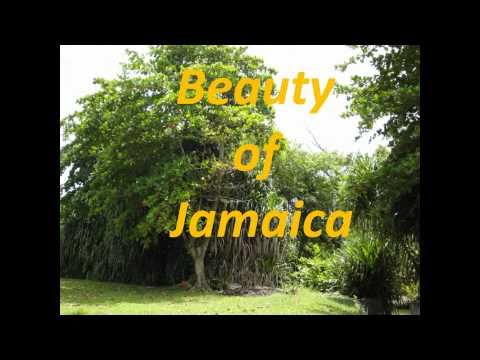 Jamaican Landscapes And Natural Beauty Youtube