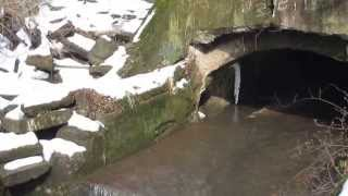 Combined Sewer Overflow in Pittsburgh (Frick Park)