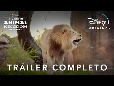 La Magia de Animal Kingdom de Disney | Disney+