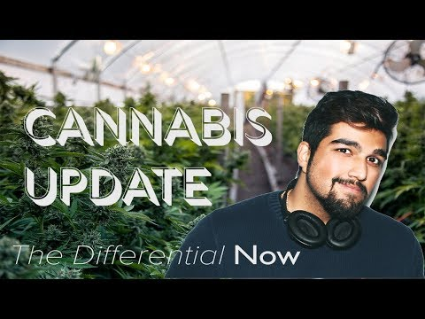 HUGE CANNABIS NEWS THIS WEEK! | The Differential Now