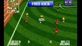 Striker 96, gameplay Sega Saturn Japan