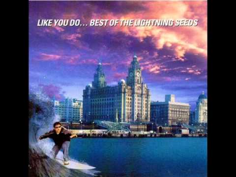 The Lightning Seeds - What You Say mp3