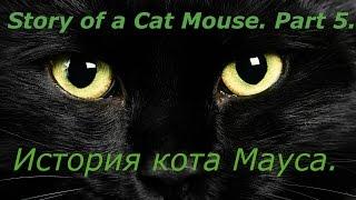 Story of a Cat Mouse.Part 5.История кота Мауса.