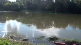 Chouzé sur Loire 37