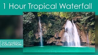 Gambar cover Waterfall Sounds -1 Hour Tropical Emerald Waterfall with Water and Jungle Bird Sound