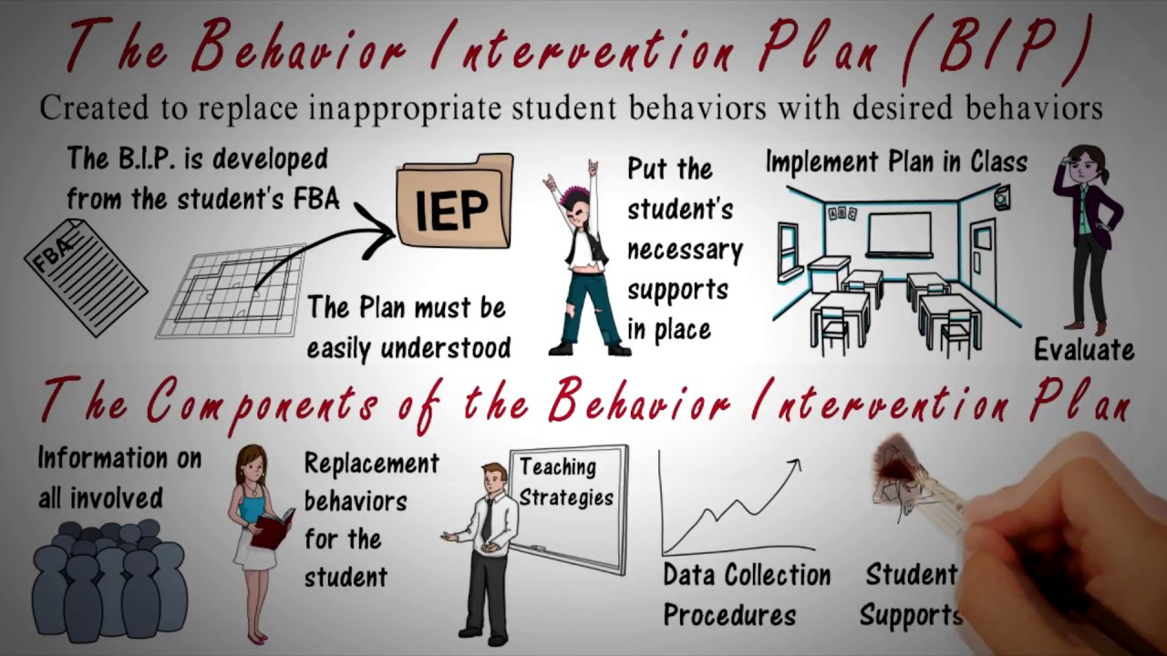 Behavior Intervention Plan: BIP Overview