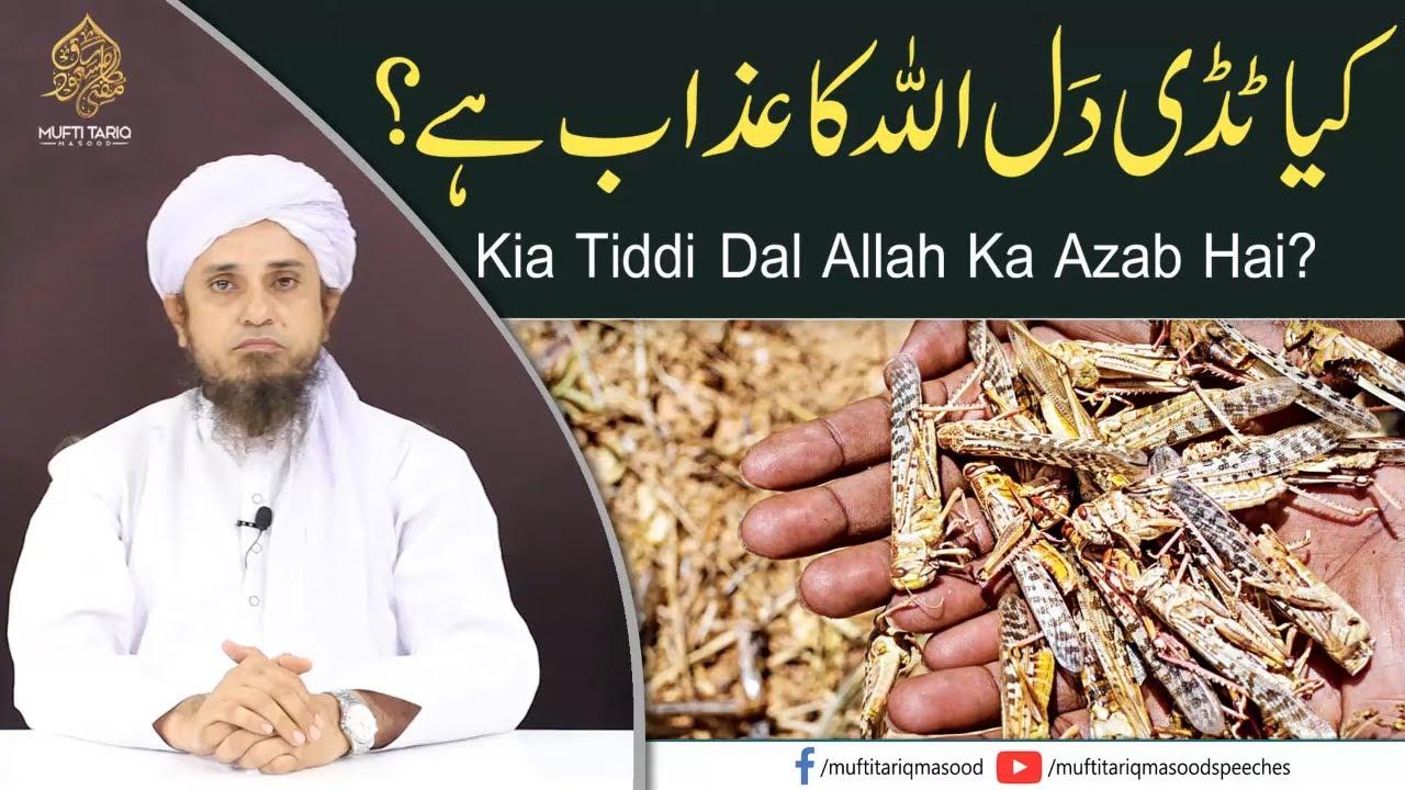 Kia Tiddi Dal Allah Ka Azab Hai?    Mufti Tariq Masood Speeches 🕋