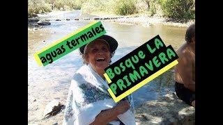 RIO BOSQUE LA PRIMAVERA Y AVENIDAS VALLARTA Y PATRIA - Lorena Lara