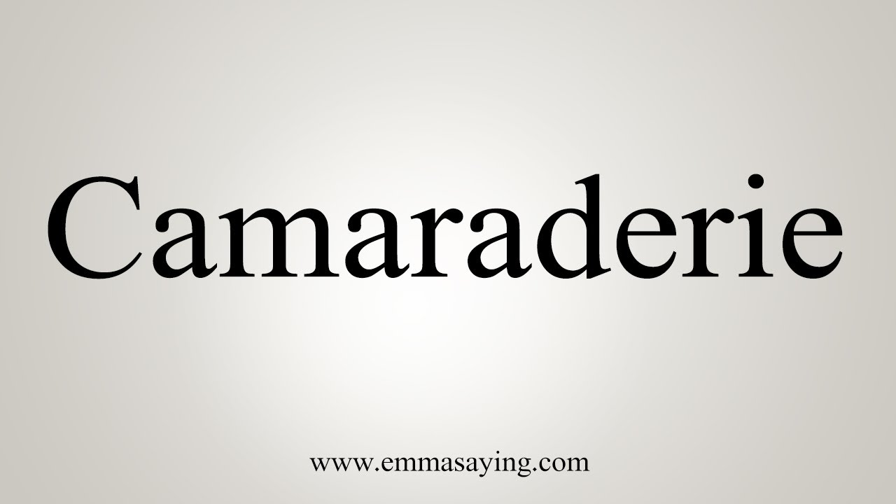 How To Say Camaraderie