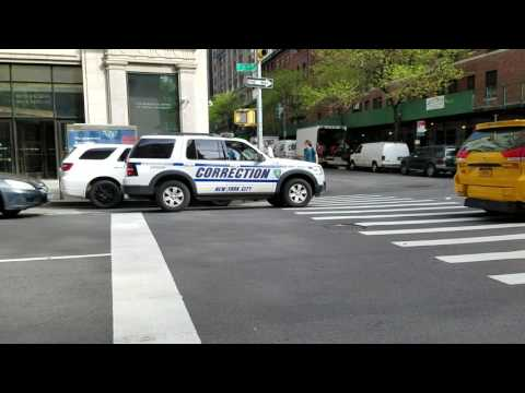 New York City Corrections Department Transportation Division Supervisor Passing By On 5th Ave