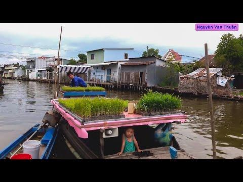Du Lịch Khám Phá - Huyện Vĩnh Thuận (Kiên Giang) - Vietnam Discovery Travel