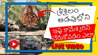 ISTA KAMESWARI TEMPLE SRISAILAM II ADVENTURES AND THRILLING RIDING ON FOREST