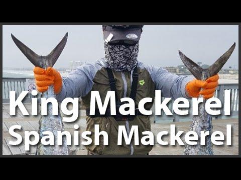 [Pier Fishing #50] King & Spanish Mackerel fishing at Panama city pier (APR 27, 2017)