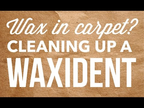 How do I get Scentsy wax out of carpet? Cleaning up a WAXident!