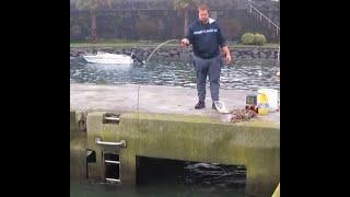 Fishing video Pescando Tainha fishing Flathead grey mullet البوري الرمادي Pesca de Lisa