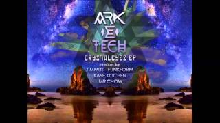08   Ark E Tech feat  Synthetic Structures   Diagnostix Kase Kochen Remix