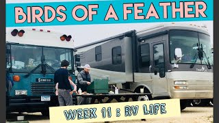 Gambar cover Birds of a Feather~WEEK 11: RV Life